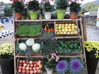 Estande de frutas, legumes e flores em Tiradentes (Foto: Alex Araújo/G1)