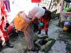 Sesma alerta a população a pedir identificação de agentes de endemias