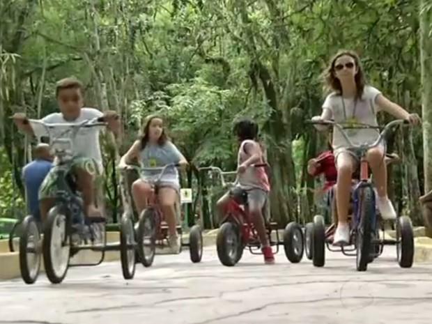 Brinquedos do zoológico de Volta Redonda são uma boa diversão para as crianças (Foto: Reprodução/TV Rio Sul)