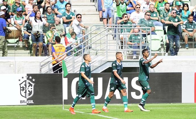 Palmeiras x Goiás (Foto: Marcos Ribolli)