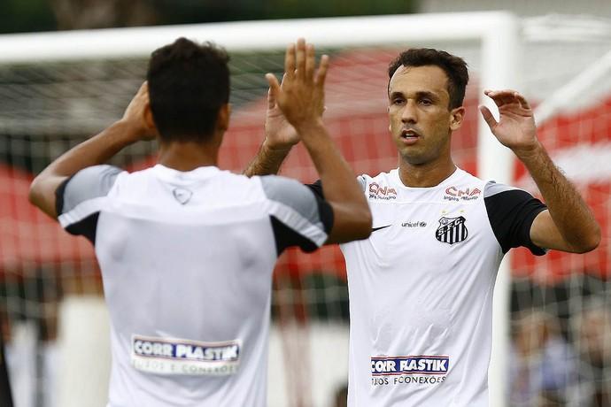 Thiago Ribeiro atacante Santos (Foto: Ricardo Saibun/Santos FC)