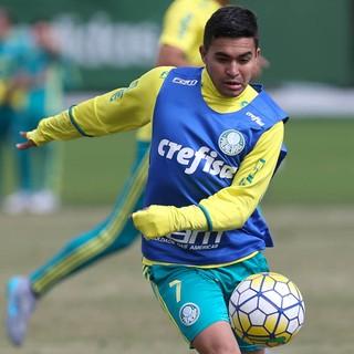 Dudu Palmeiras (Foto: César Greco / Ag. Palmeiras / Divulgação)