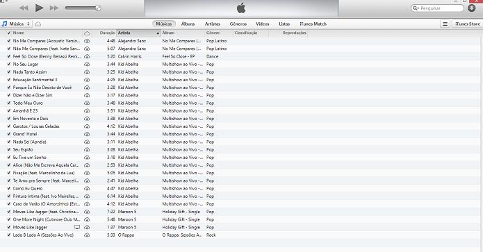 iTunes aceita músicas baixadas para o PC (Foto: Reprodução/Thiago Barros)