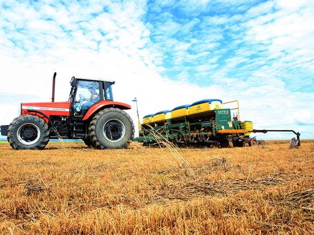 Plantação de soja em cidades de Mato Grosso. (Foto: Lenine Martins/Secom-MT)