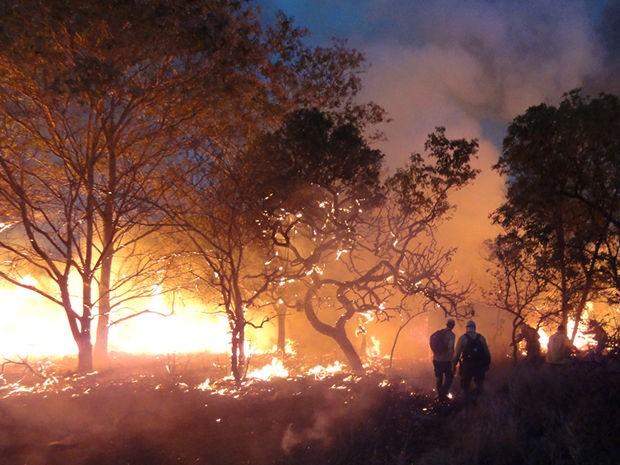 Brigadistas tentam combater incêndio no Parque de Chapada (Foto: ICMBio/ Parna da Chapada dos Guimarães)