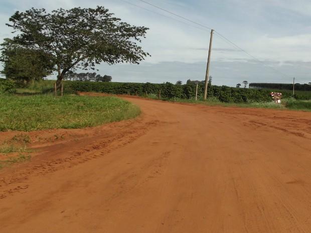 Cafezal fica em estrada rural no Bairro Anhumes (Foto: André Silva/ Site Portal Arandu)