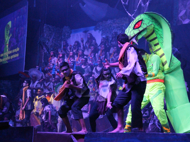 Espetáculo é realizado todos os anos (Foto: Ive Rylo/G1 AM)