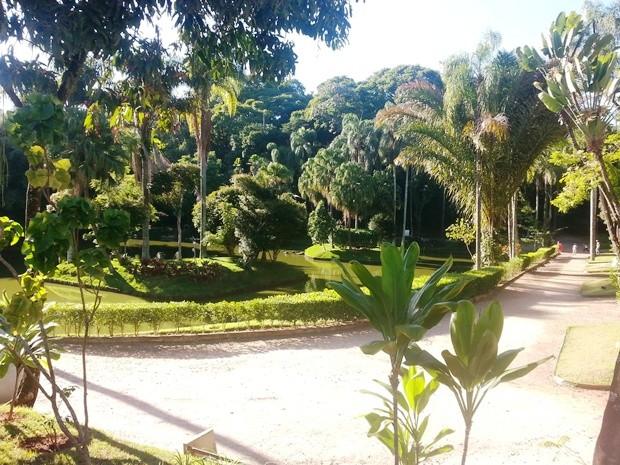 Visita guiada Parque Museu Juiz de Fora 20 (Foto: Roberta Oliveira/G1)