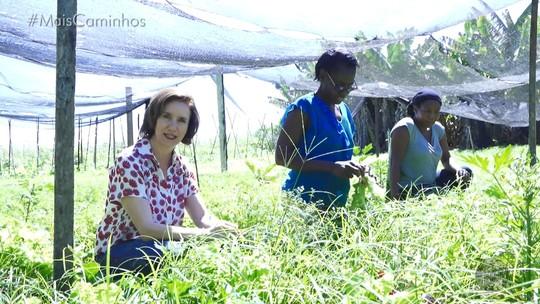 Amor à terra: família adota a produção orgânica e defende o equilíbrio da natureza