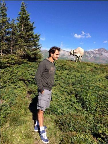 Roger Federer posa com vaca na Suíça (Foto: Reprodução Twitter)