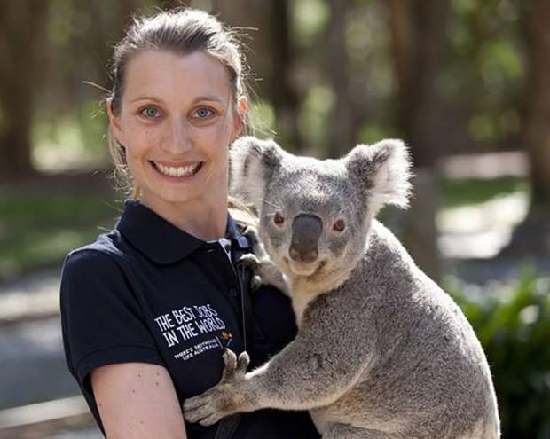 Foto de coala com 'mão boba' virou sensação na web (Foto: Reprodução/Facebook/Visit Queensland)