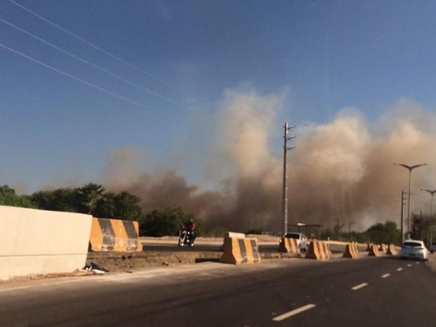 Incêndio atinge área de preservação ambiental do Parque do Cocó  (Foto: TV Verdes Mares/Reprodução)