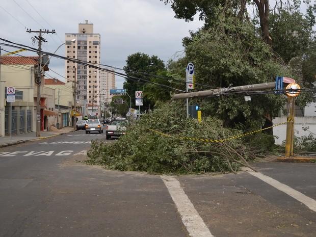 Poste caiu e deixou rua sem energia em Piracicaba (Foto: Thomaz Fernandes/G1)