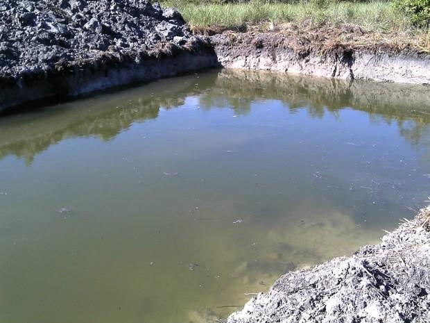 Proprietário também escavou dois tanques em uma área de várzea (Foto: Divulgação/PMA)