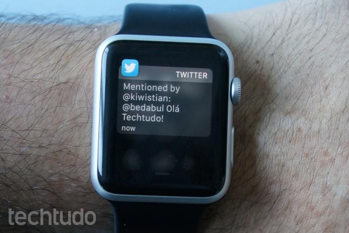 Além do Twitter e do Instagram, ainda há poucos apps de terceiros para o Apple Watch (Foto: Bernardo Dabul/TechTudo)