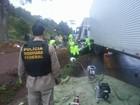 Cinco pessoas morrem em intervalo de 14 horas em rodovias catarinenses
