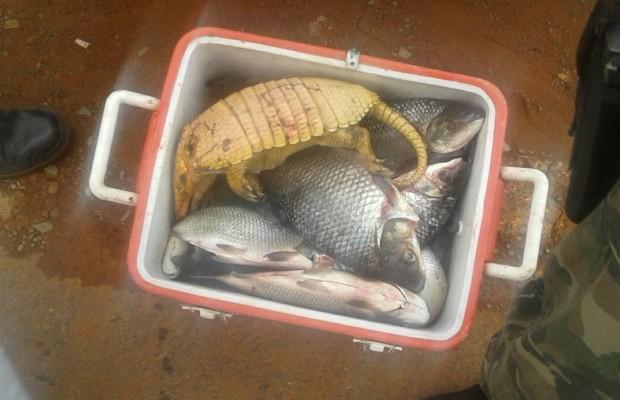 Dupla é presa com tatu abatido, 30 kg de peixes e porção de droga, em Goiás (Foto: Divulgação/PM)