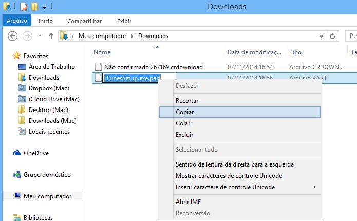 Copie o nome do arquivo gerado pelo Firefox (Foto: Reprodução/Helito Bijora)