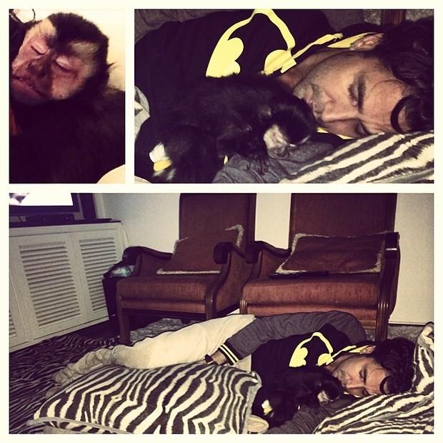 Latino dorme com macaco de estimação (Foto: Reprodução/Instagram)