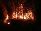 Fogo destrói região próxima ao Monte Carmelo em Carmópolis