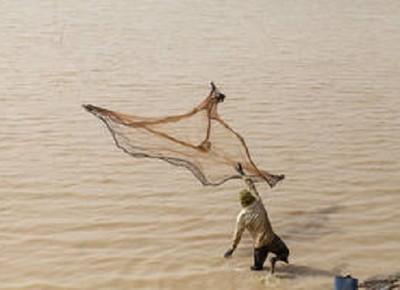 peixe-pesca-africa (Foto: Divulgação/FAO)