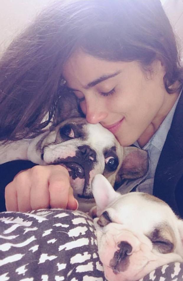 Camilla Camargo com os pets Gorda e Bento (Foto: Reprodução/Facebook)