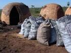 Justiça aceita denúncia de MPF sobre trabalho escravo em carvoaria