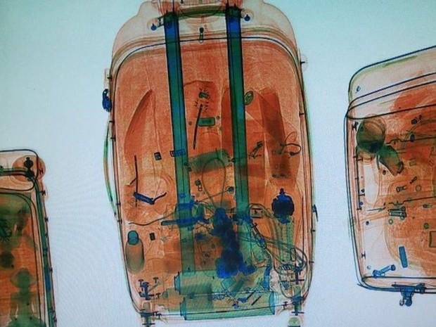 Droga foi detectada por meio de raio-x por agentes da PF (Foto: Divulgação/ PF)