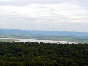 Local onde construção da barragem está prevista fica próximo a mata - Piracicaba (Foto: Thomaz Fernandes/G1)