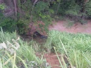 Caminhonete caiu no Rio Jequitinhonha e motorista não foi encontrado até o momento. (Foto: George Gonçalves/Inter TV dos Vales)