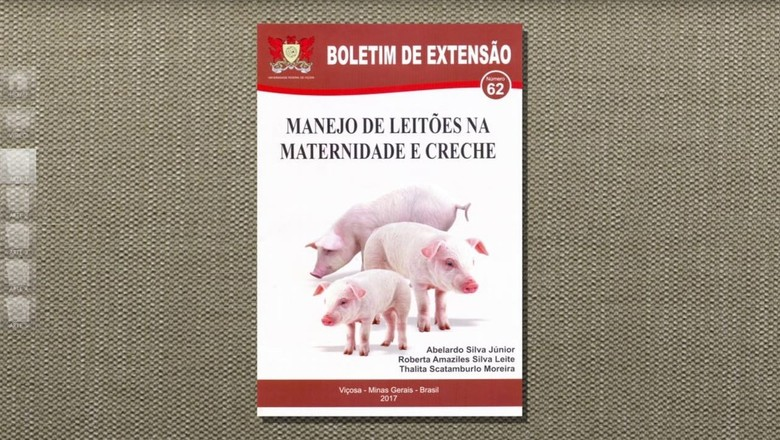 leitão-Tv-criação (Foto: Reprodução/TV Globo )