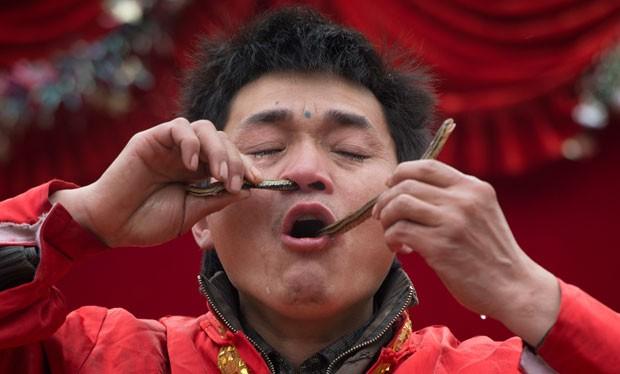 Chinês colocou uma cobra pelo nariz e a tirou pela boca (Foto: Ed Jones/AFP)