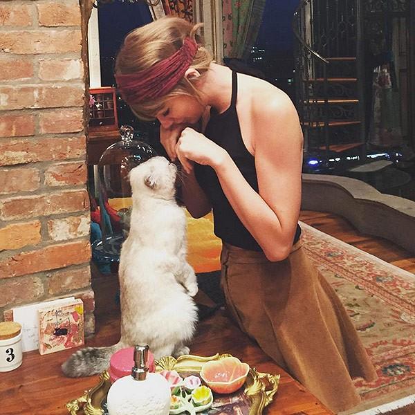 Taylor Swift e a gatinha Olivia Benson (Foto: Reproduo / Instagram)