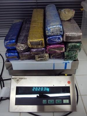 Droga estava escondida em sacola com planta (Foto: Divulgação/PF)