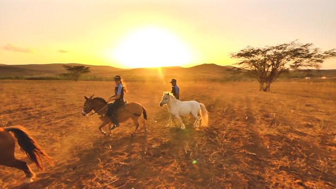 Fazenda de pôneis é atração para o turismo regional em Campestre (Foto: André Luiz)