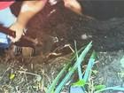 Presos três suspeitos de matar agricultor em Arroio Grande, no RS