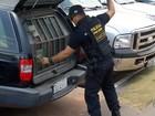 Gaeco prende 6 em ação contra tráfico de drogas e lavagem de dinheiro