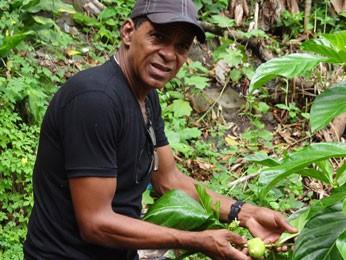 Funcionário público Geraldo Clemente e o pé de Noni que plantou em casa (Foto: Renan Holanda / G1)