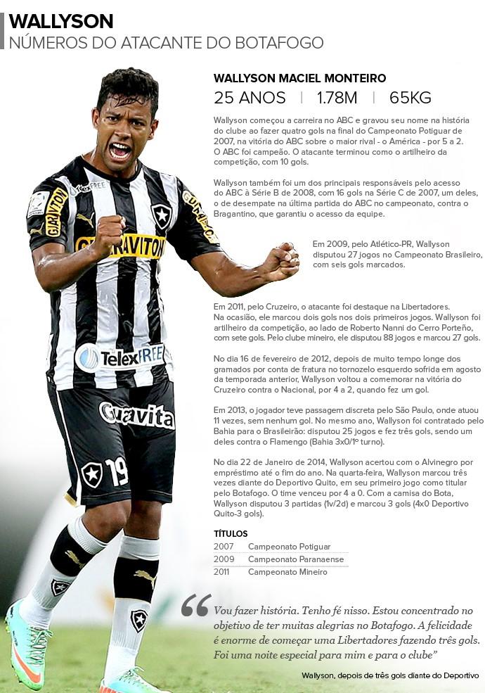 Info WALLYSON Botafogo 2 (Foto: Infoesporte)