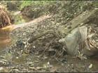 Capital das flores, Holambra tem 70% das nascentes degradadas, diz laudo