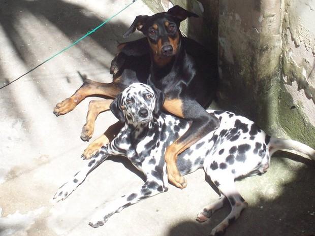 Linda e Yeska (Foto: Reprodução/Facebook)