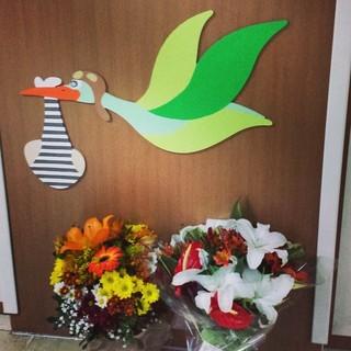 Flores de Luma Costa (Foto: Reprodução/Reprodução)