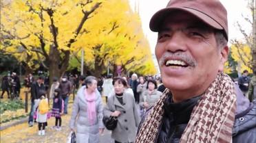 Japoneses apreciam a natureza no final do outono