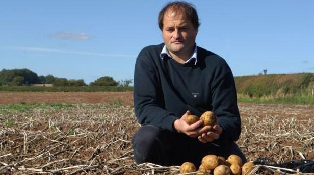Cultivar batatas é uma atividade que Chase herdou do pai  (Foto: BBC)