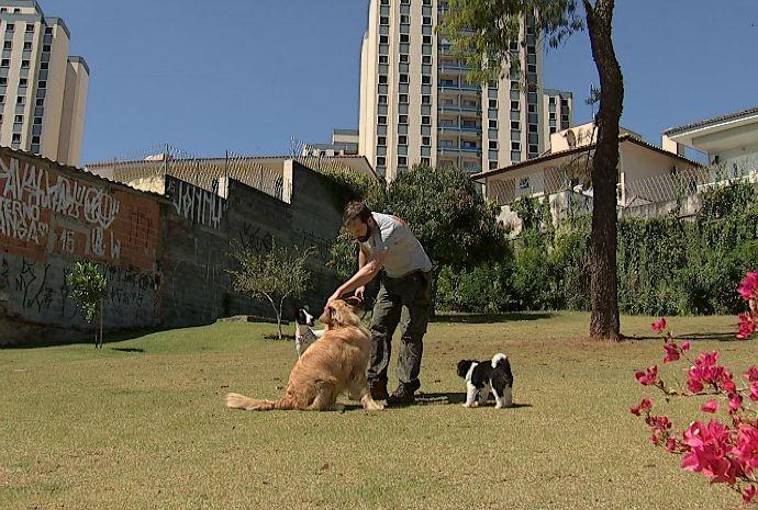 Programa mostra praça onde quem manda são os bichinhos (Foto: Reprodução / TV TEM)