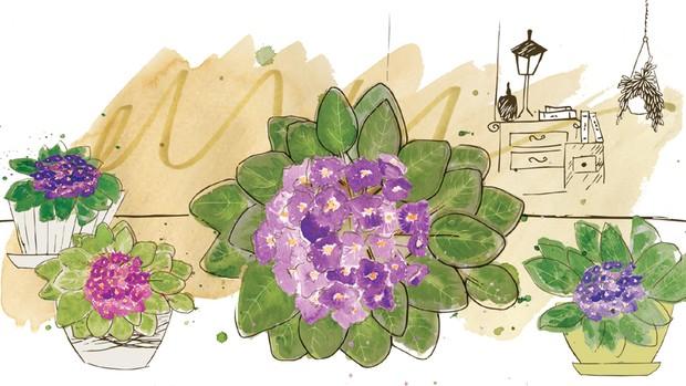 Ananda-Apple-violeta (Foto: Ilustração Patrícia Sodré/Editora Globo)
