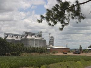 Armazéns da Conab (Foto: Divulgação/Ministério da Agricultura)