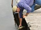 Pesquisadores criam desequilíbrio ecológico em lago para monitorá-lo