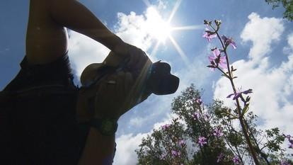 Fotógrafo capta belezas do Parque do Itacolomi