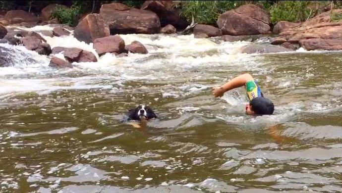 Natação é um dos maiores prazeres de Guz Carvalho, o cão esportista  (Foto: Iury Carvalho/ arquivo pessoal )